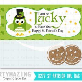 St Patricks Printable Bag Toppers, Owl I am Lucky Printable Party Favor Bag Topper , Instant download D277