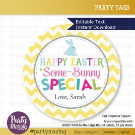 Happy Easter Tags,  Printable Editable Some-Bunny Special Tag, Gift Tags, Cupcake Toppers, Printable stickers  D824