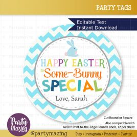 Last Minute Happy Easter Tags,  Printable Editable Party Favor Tag,  Some-Bunny Special Tag, Gift Tags, Printable stickers D864