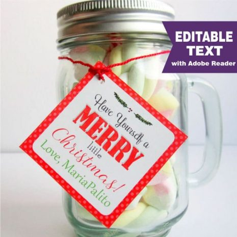 Editable Christmas Favor Tag, Printable Printable Gift Tag, Have a Merry Little Christmas, Round and Square Holiday Label -D793 HOCH1