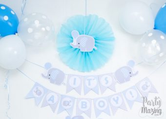 Baby Blue Elephant Baby Shower Full Set