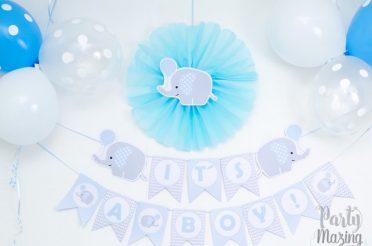 Baby Blue Elephant Baby Shower Full Set