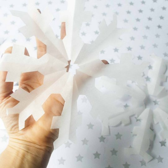 How-to-make-a-Snowflake-from-a-sheet-of-paper-3-3