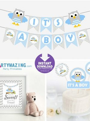 Blue Owl Printable Blue Baby Shower Express Party Package Set | E002