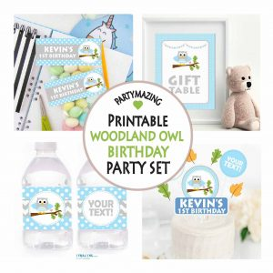 Editable Blue Owl Kids Birthday Full Party Decoration Pack | E005