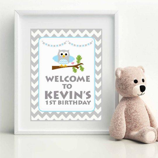 Editable Blue Owl Kids Birthday Full Party Decoration Pack | E005