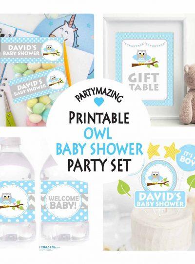 Blue Owl Printable Full Party Decorations Set | E003
