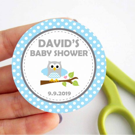 Editable Blue Owl Owl Printable Full Party Package Set for Birthday Party or Baby Shower   BBOB1   E003