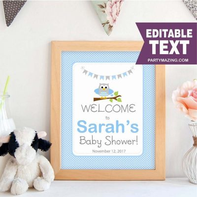Editable Blue Owl WELCOME Party Sign | Baby Shower | Baby Blue and Grey Baby Shower | Sign | E089