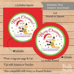 Editable Merry Christmas Gift Tag with a Santa Claus Holiday Design | E296