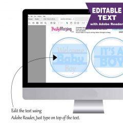 Editable Owl Centerpiece | Boy Blue Baby shower | Printable Party Circles | DIY Centerpiece | E054