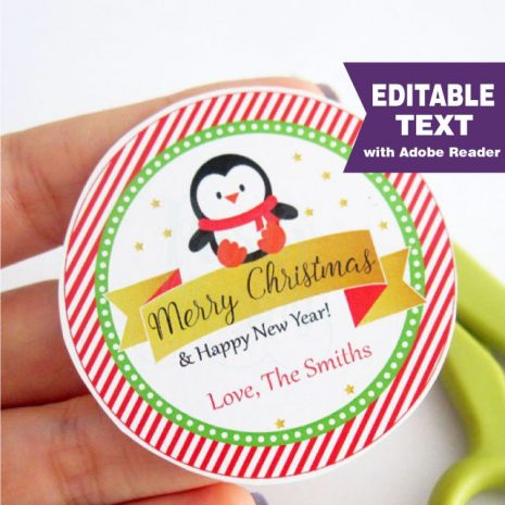 Editable Penguin Merry Christmas & Happy New Year Gift Tag for your Kids Gifts | E311
