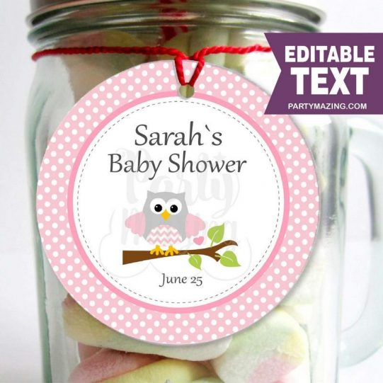 Editable Pink Owl Baby Shower Tag   E299