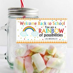 Editable You are a Rainbow of Possibilities Welcome Back to School Teacher Bag Topper | E301