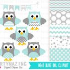 Mint Owl Baby Shower or Nursery Clipart Set including Matching Digital Paper Pack   E364