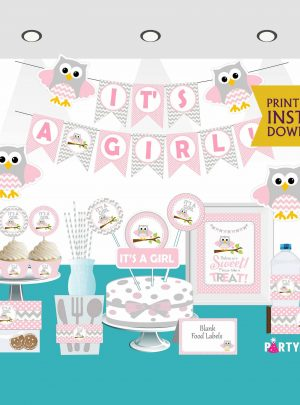 Pink Owl Baby Shower Printable Express Party Set E033