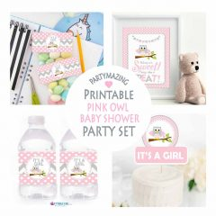Pink Owl Baby Shower Express Party Package Set for a Baby Girl | PK01 | E033