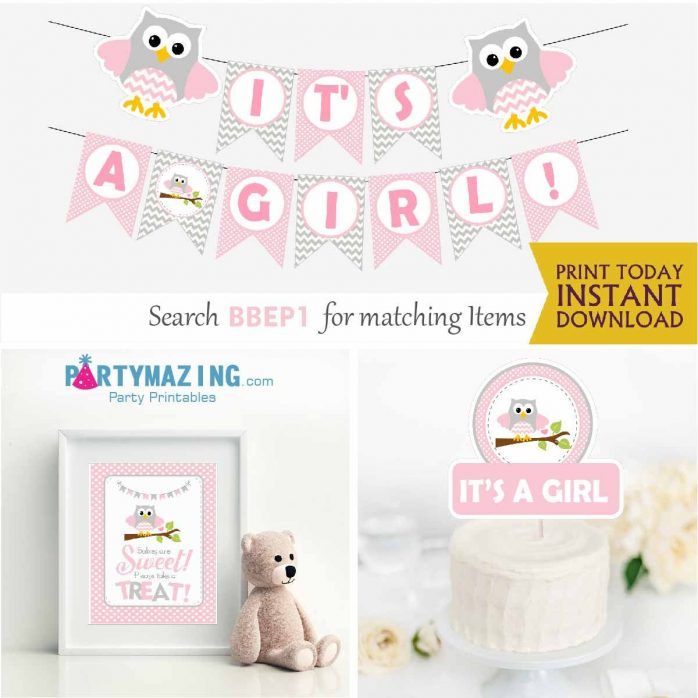 Pink Owl Baby Shower Express Party Package Set for a Baby Girl | BBOP1 | E033