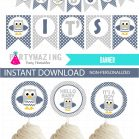 Printable Boy Navy Blue Owl Baby Shower Party Express Package Set |E032