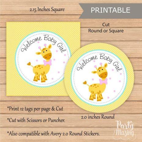Printable Girl Giraffe Baby Shower | EXPRESS Party Package | Party Decoration Kit | Instant Download | BBGG1 | E034