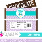 Printable Lavender and Turquoise Owl Baby Shower Express Party Set Package | E210