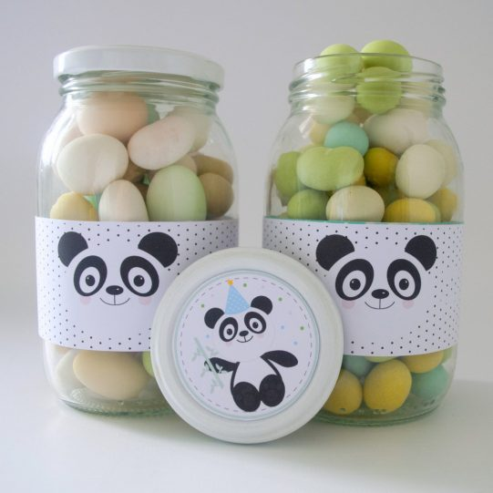 Printable Little Panda Bear Quick Party Decor Package Set Decoration for Boy or Girl   E001