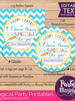 Cute Some-Bunny Special Happy Easter Gift Tag |  Editable Label or Sticker E135