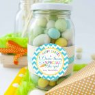 Cute Editable Some-Bunny Special Boy Easter Gift Tag or your Party Favor Labels   E135