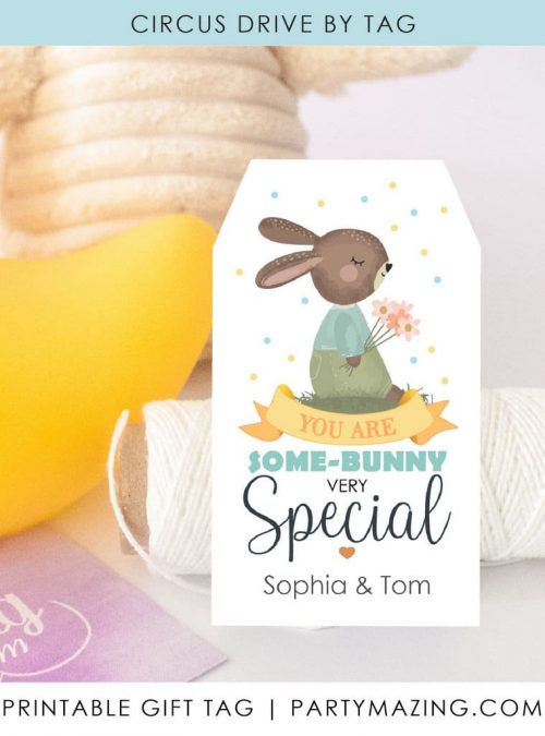 You are Some-Bunny Special Tags | Printable Easter Bunny Gift Tag, sticker or Favor Tag | E515