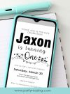 Little Animals Drive By Birthday Invitation | TEXT or Email Invitation | Cat and Bear Black and White Invite |  E069